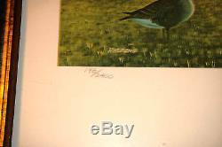 Jerry Raedeke 17 x 26, Backyard Birds Ducks Unlimited Limited Edition Print