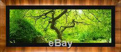 Limited Edition Fine Art Photo, Vershinin Magic Forest, 71, Peter Lik style